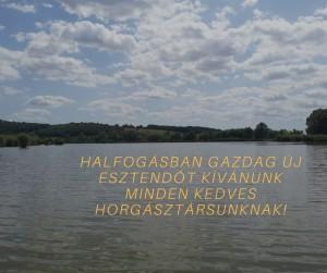 Halfogásban Gazdag Új Esztendőt KívánunkMinden Kedves Horgásztársunknak!